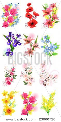 Vector set of different flowers