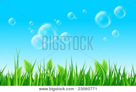 Soap bubbles on summer meadow