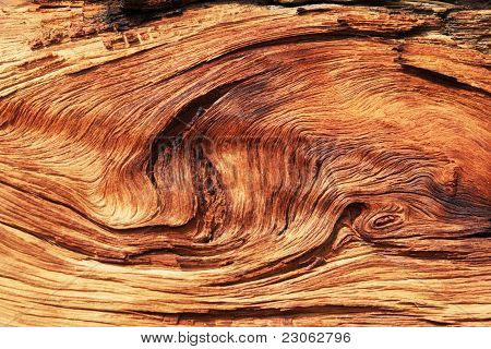 Twisted Wood Grain