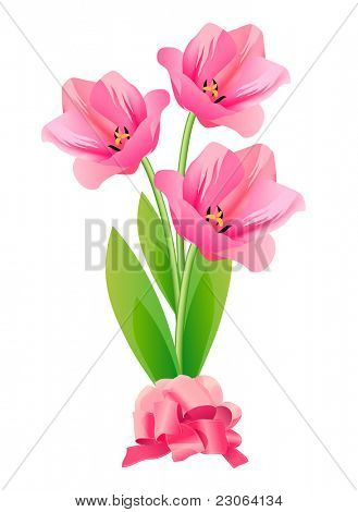 Three tulips isolated. Raster version. Vector version is in my gallery.