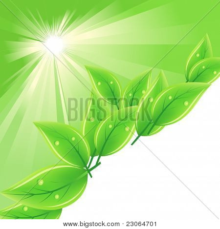 Background with green fresh leaves and stylized sun. Raster version. Vector version is in my gallery.