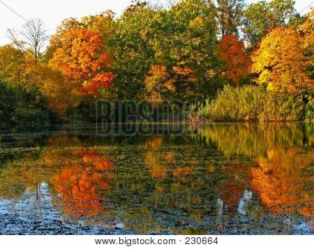 Clours des Herbstes