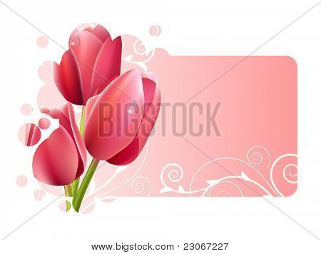 Beautiful pink frame with tulips