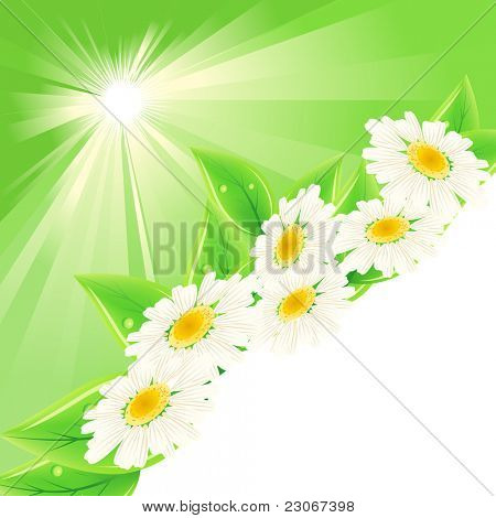 Background with green fresh leaves and flowers. Raster version. Vector version is in my gallery.