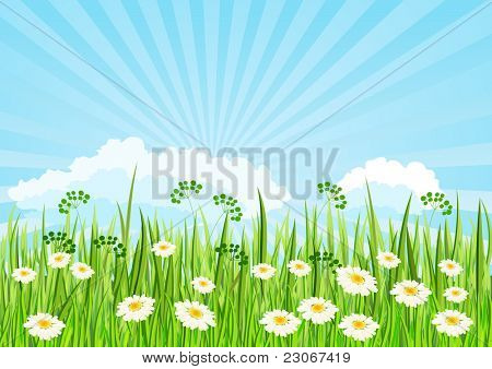 Green meadow and blue sky. Raster version. Vector version is in my gallery.