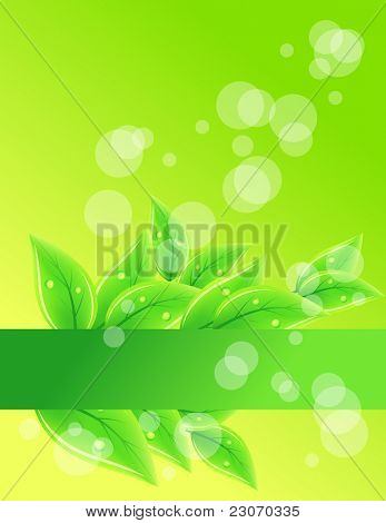Background with beautiful green leaves. Raster version.