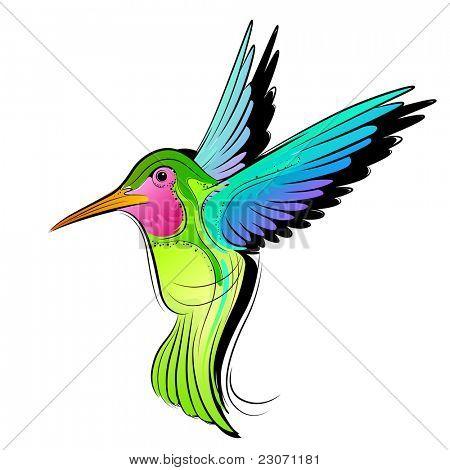 Ilustração em vetor beija-flor colorida.
