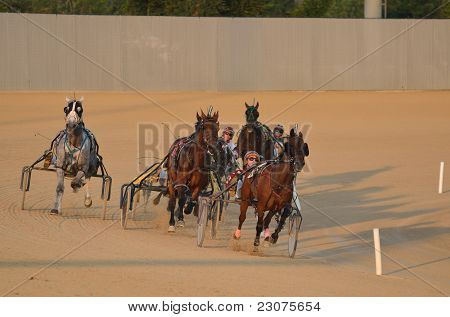 Horses Racing In A Harness Race