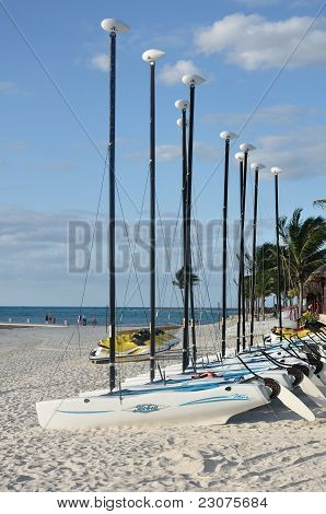 Hobie Cat Sailboats On A Tropical Beach