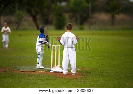Boys Cricket