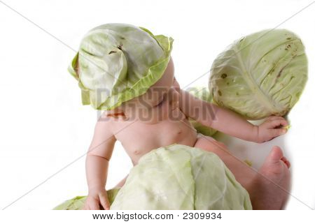 Plays Of The Tot With Cabbage