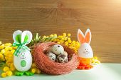 Easter Background. Easter Bunnies And Easter Eggs In The Nest Near The Mimosa Flowers, Free Space Fo poster