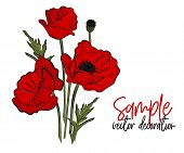 Vector Red Poppies Flowers. Bloom Symbol Of Spring - Botany Illustration. Opium Season Holiday Plant poster