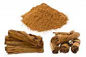 True Cinnamon (cinnamomum Verum)