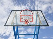 Net y borde de baloncesto