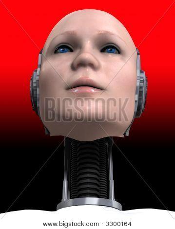 A Cyborg Head