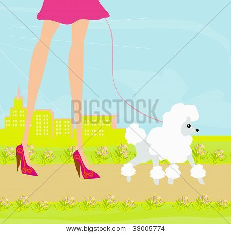 fashion girl legs with her dog Shopping