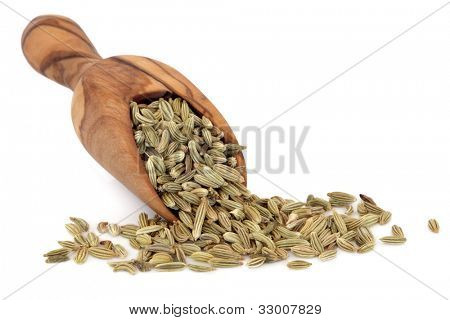 Fennel seed in an olive wood scoop over white background.