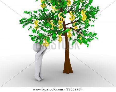 Persona corte dólar de árbol de dólares