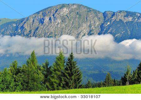 Alps mountain meadow tranquil spring view  near Innsbruck Austria