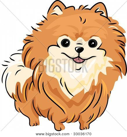 Illustration Featuring a Pomeranian