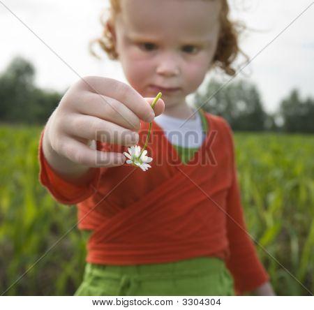 Little Gilr Holding Flower