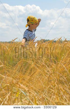 Happy In Golden Harvest