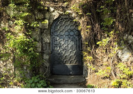 Mystery Door In The Forest