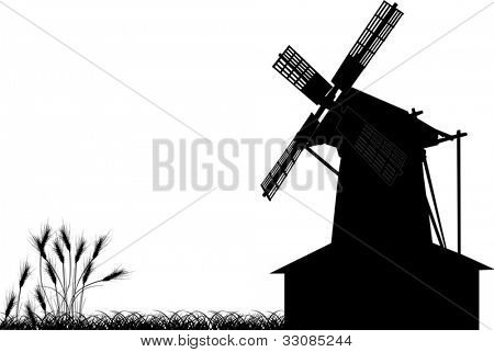illustration with wheat silhouettes near windmill isolated on white background