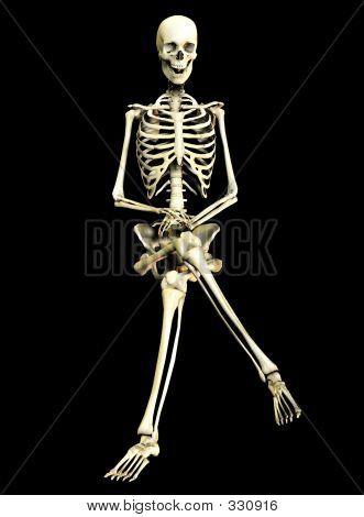 Bone 39