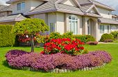 stock photo of manicured lawn  - Manicured House and Garden displaying annual and perennial gardens in full bloom - JPG