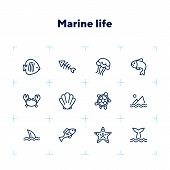Marine Life Icon. Set Of Line Icons On White Background. Crab, Turtle, Seashell, Starfish, Shark Fin poster