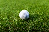 Golf Ball On The Green,green Grass With Golf Ball Close-up In Soft Focus At Sunlight. Sport Playgrou poster