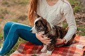 Happy Woman Together With Welsh Corgi Dog In A Park Outdoors. Young Female Owner Hugging Pet In Park poster