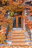 stock photo of paladin  - Colorful doorway in fall time Montreal - JPG