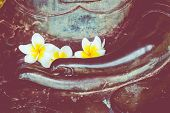 Hand Of Buddha Statue With Flover On The Lap Of Buddha. Believe, Culture, Traditional. Buddhist Beli poster