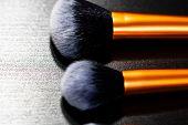 Make-up Concept. Make-up Brushes.  Powder Brush And Blush Brush. poster