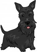picture of scottie dog  - Illustration Featuring a Scottish Terrier - JPG