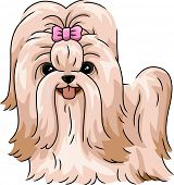 foto of dog breed shih-tzu  - Illustration Featuring a Shih Tzu - JPG