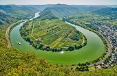 Moselle River bend near Bremm town, Germany. Hills with vineyards, river loop and road along the riv poster