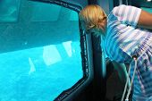 Modern Woman Looking Out Window At Bottom Of Excursion Ship. Girl Watching Sea Fishes Underwater Thr poster