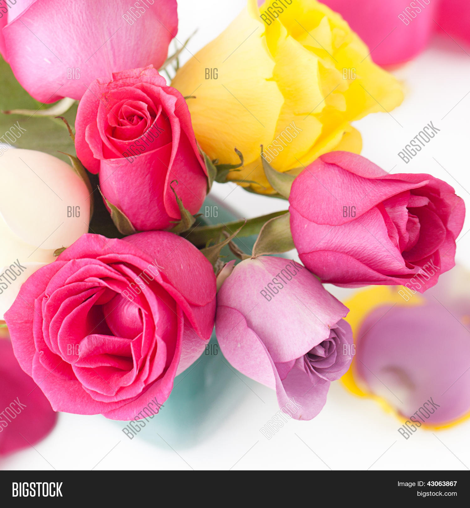 Ass Maduras http://www.bigstock.br/image-43063552/stock-photo