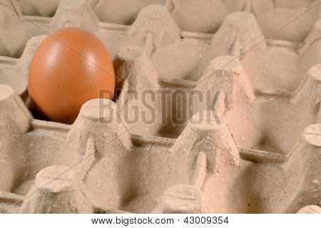 Egg carton with egg.