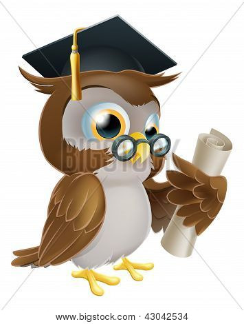 Owl With Degree Or Qualification