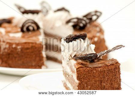 piece of fresh and sweet dessert cakes