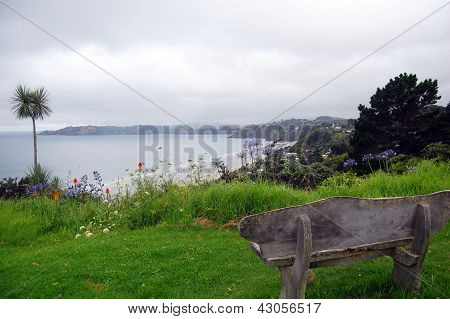 Timber Bench Sea Bay View Palm
