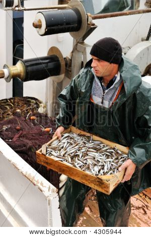 Fisherman Carrying Box With Fish