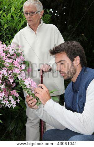 Caring garden