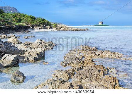La Pelosa Rocks