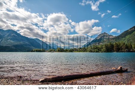 Log On Waterton Lake With Mountains